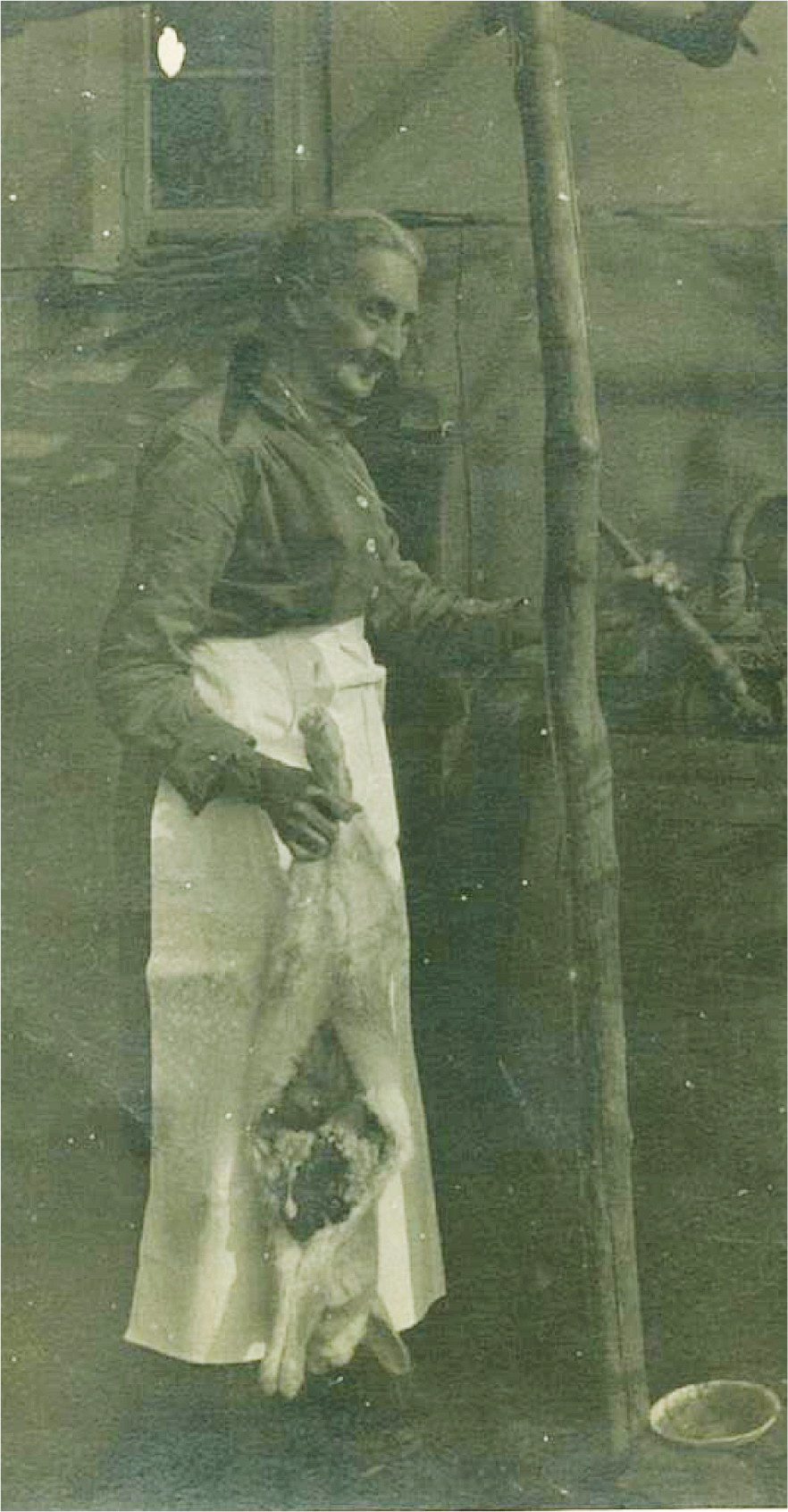 3744-sarah-davis-nee-stiles-1856-1930